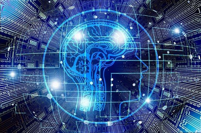 brain-hologram
