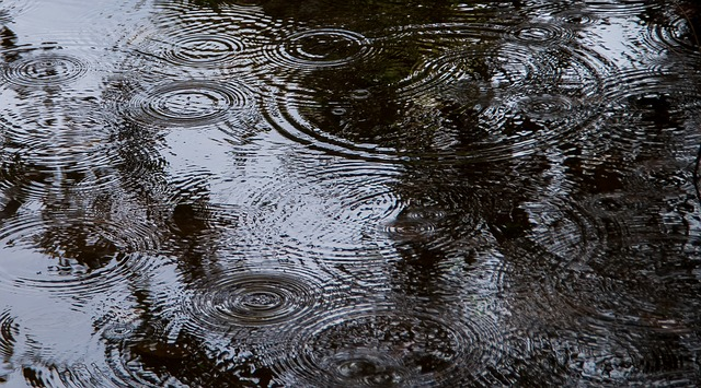 ripples-interference-pattern