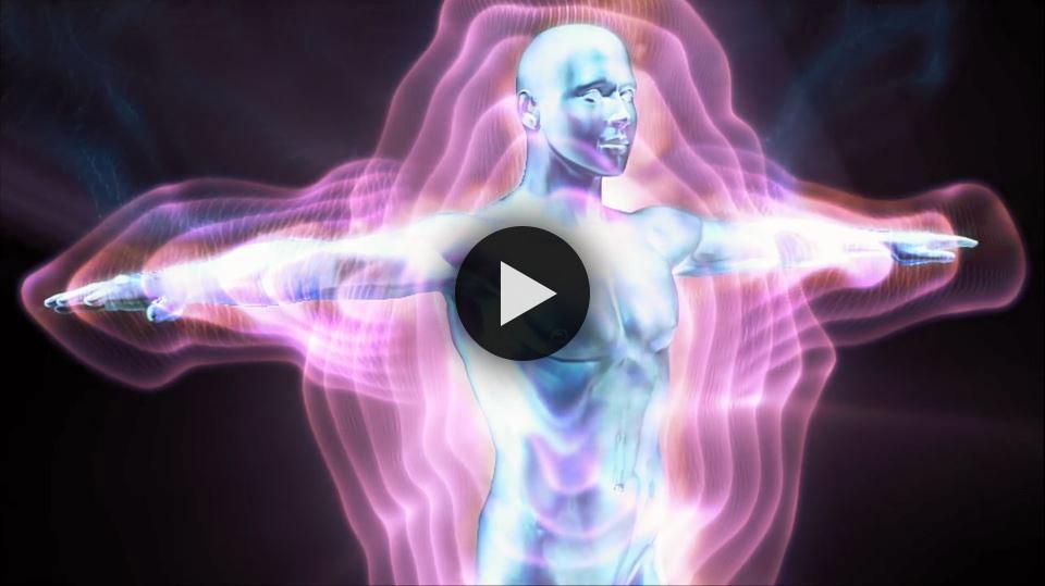 Bioenergetics Video